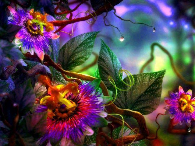 fiorizontas.jpg