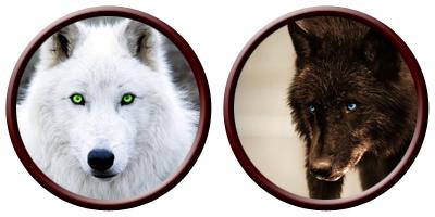 double_dog.jpg