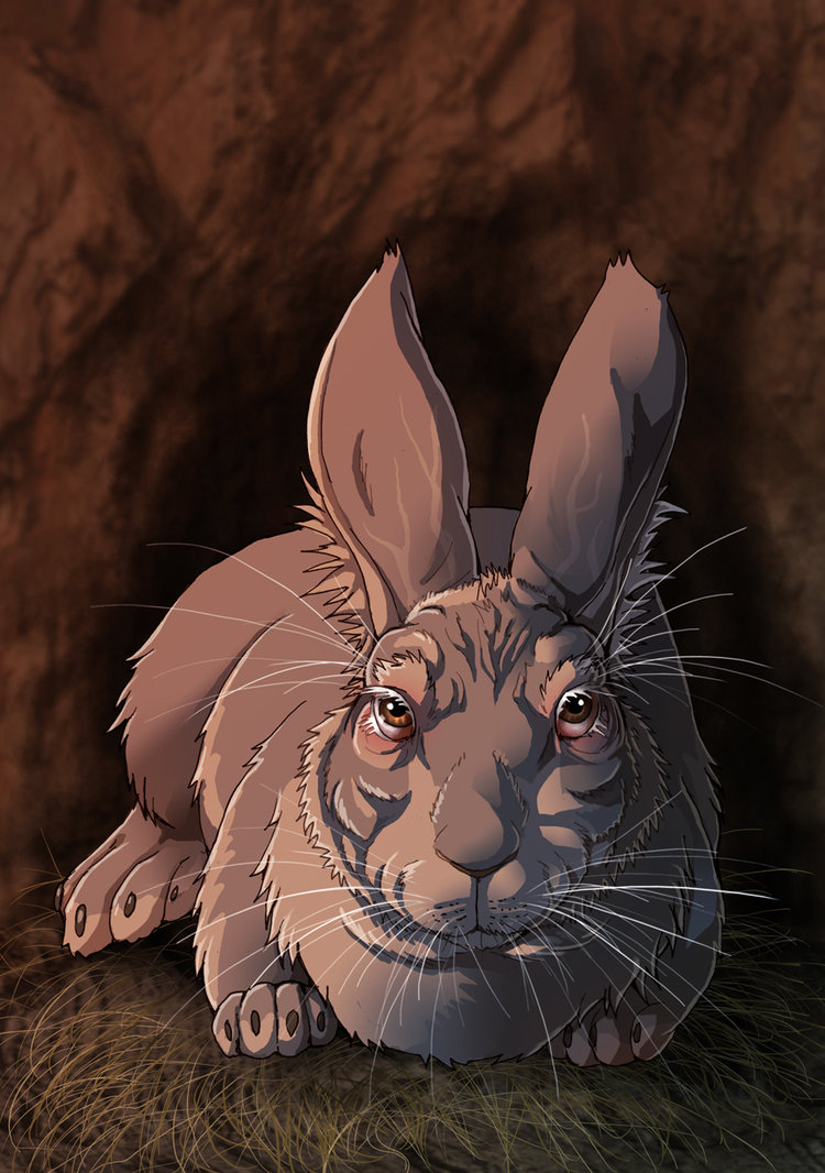 watership_down___the_chief_rabbit_by_fiszike-d5cglcs.jpg