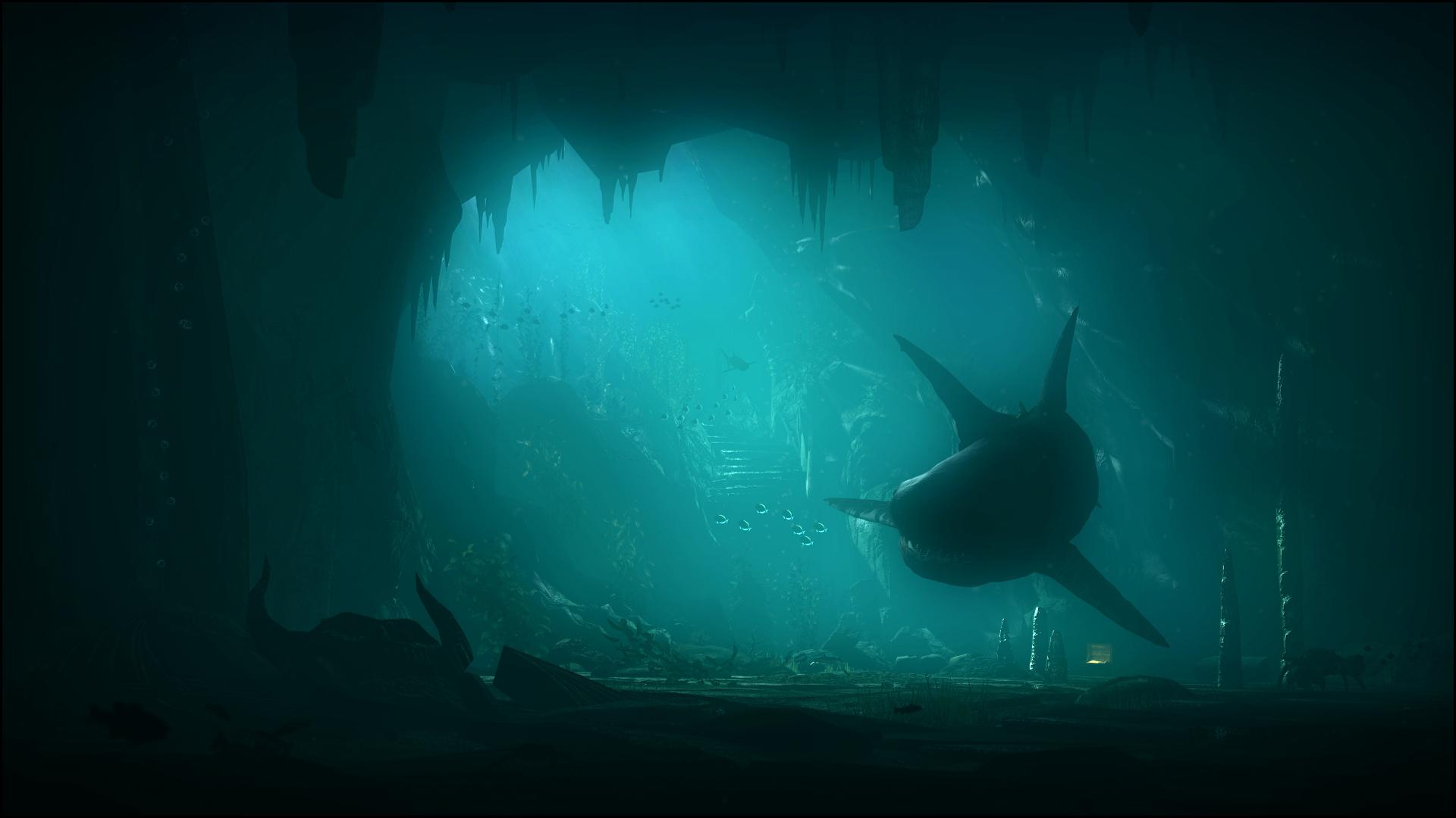 art-akula-podvodnyy-mir-more.jpg