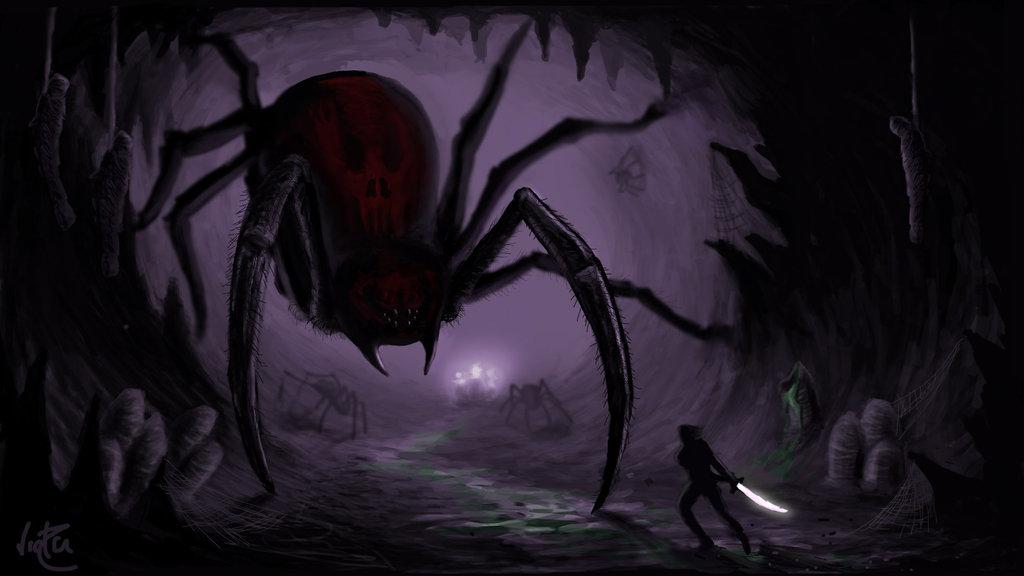spider_fight.jpg