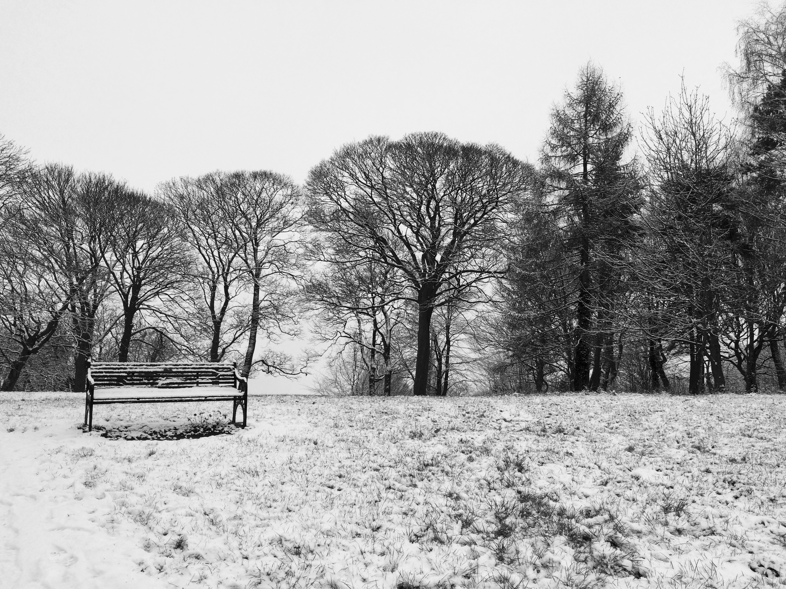 Landscape-Alexandra-Hudspith-Love-Woodthorpe-Park-snow.jpg