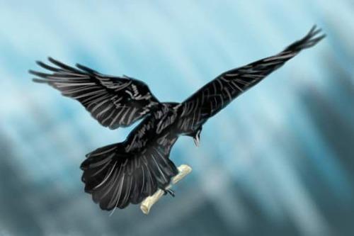 Messanger_Raven.jpg