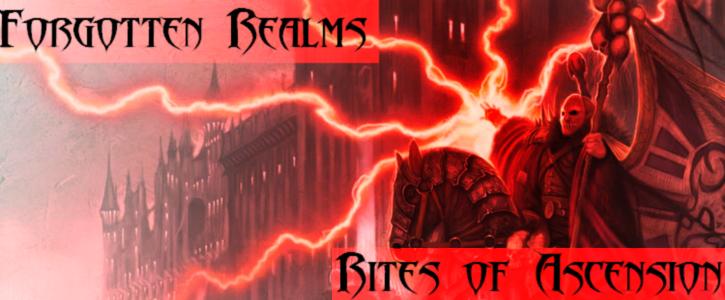Forgotten realms banner 1