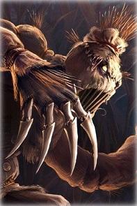 AE-session64-VaultoftheNine-scarecrow_20191215.jpg