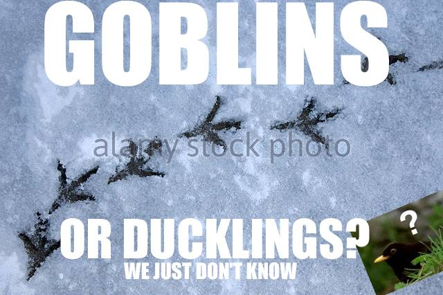 Goblins_or_ducklings.jpg