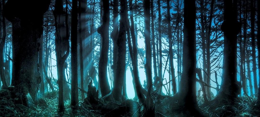 Mysterious_forest_wallpaper_1366x7682.jpg