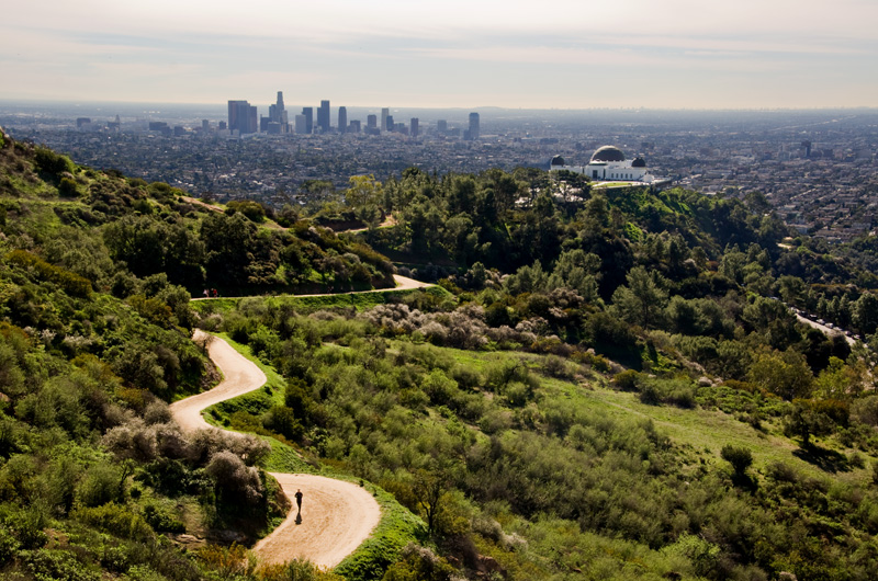 Griffith-Park-Los-Angeles-Hiking-Track.jpg
