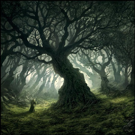 Dark_Grave_Wood.jpg