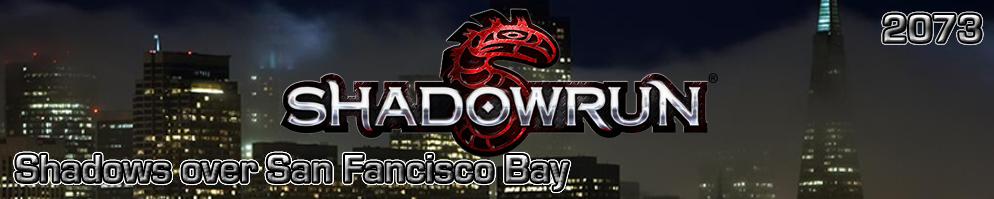 Shadowrun banner 03