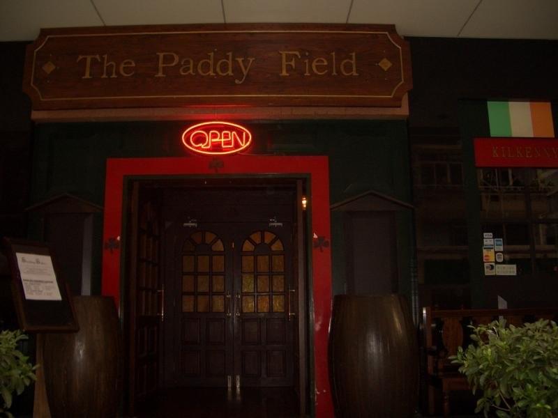 paddy-field.jpg
