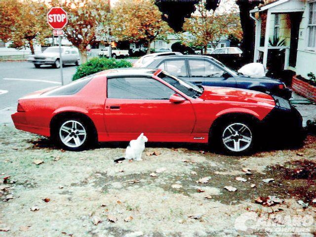 camp-1212-01-1985-california-iroc-red-california-camaro-iroc-z.jpg