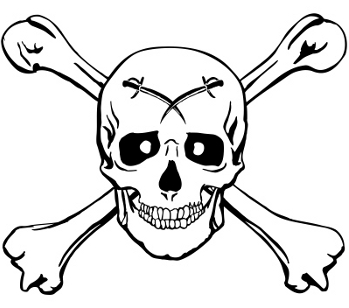 Pirate skull and bones 2079