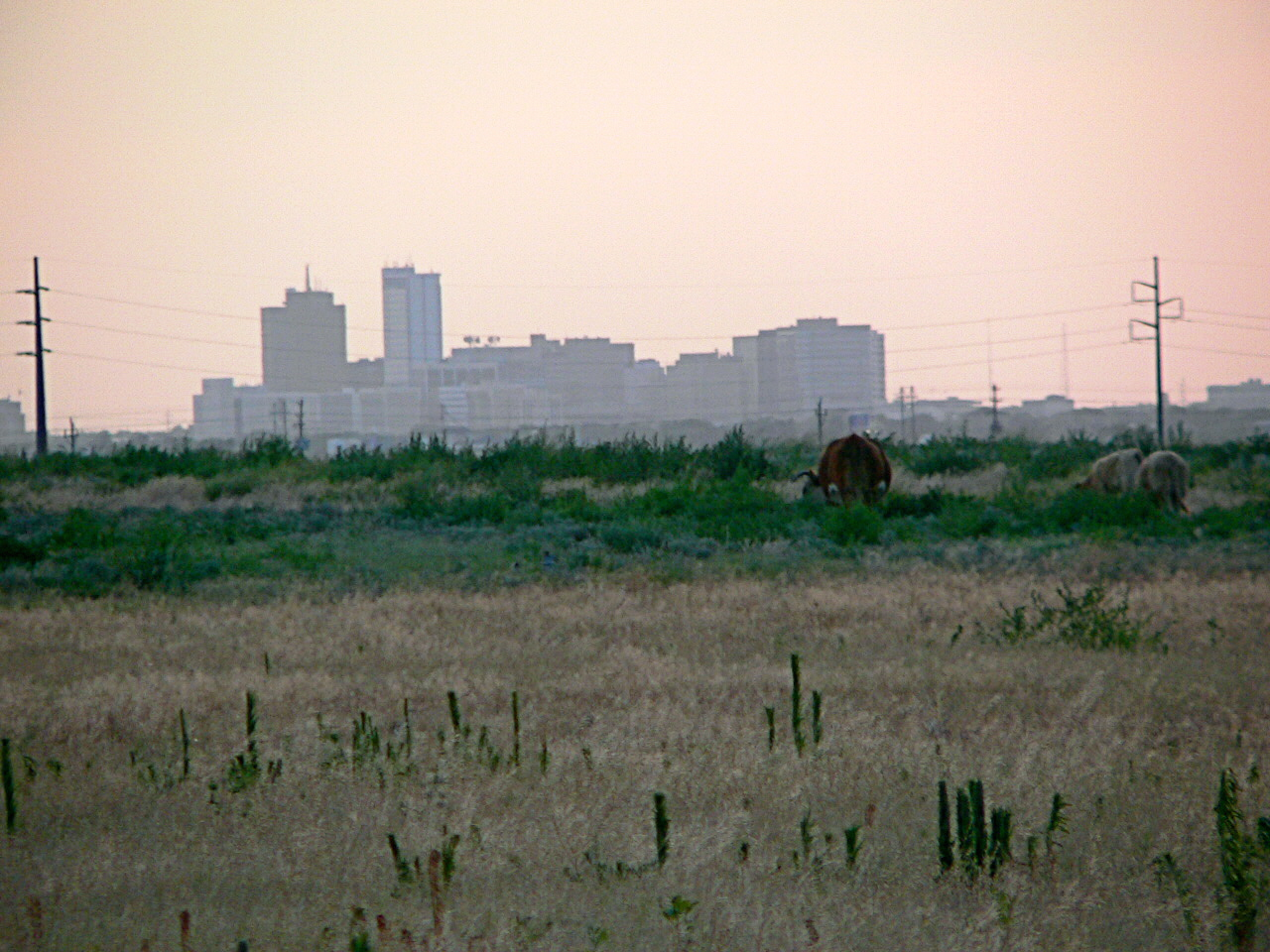 Midland_Texas_by_C4i71yn.jpg
