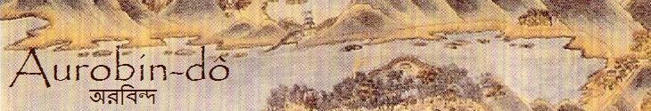 Aurobin banner