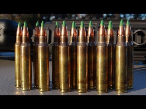 Indumil_-_Assault_Rifle_Rounds.jpg