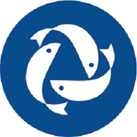 Gollere_Seashine_Trading.png