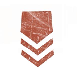 ID_Rank_-_Master_Trooper-Tech.png