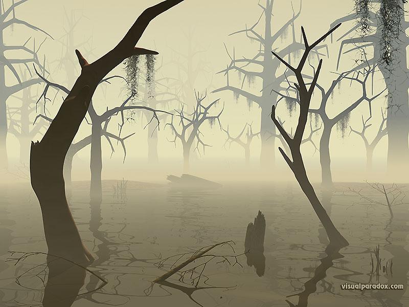 Swamp800