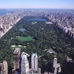 CentralPark.png