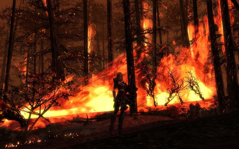Indaris_Guild_wars_caminata_burning_forest.jpg