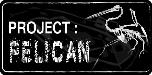 Logo pelican web