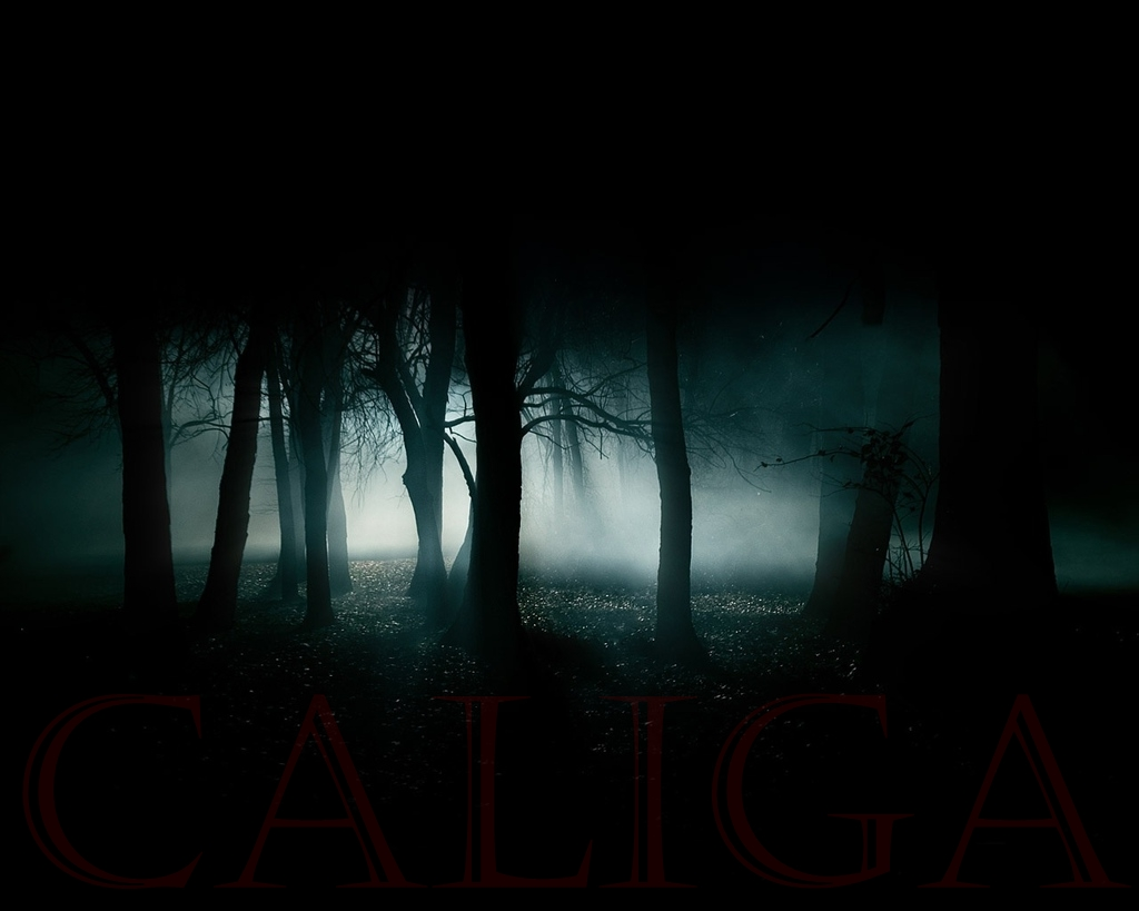 Caliga2.jpg