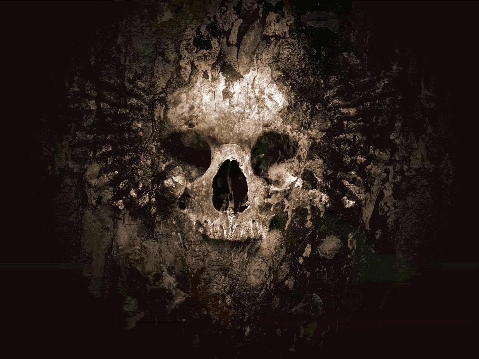 Skull wallpaper skulls 8359631 1600 1200