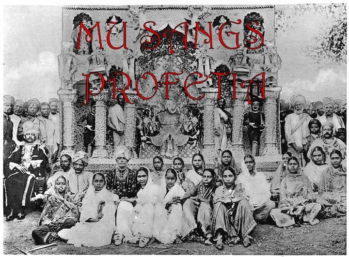 Musangs