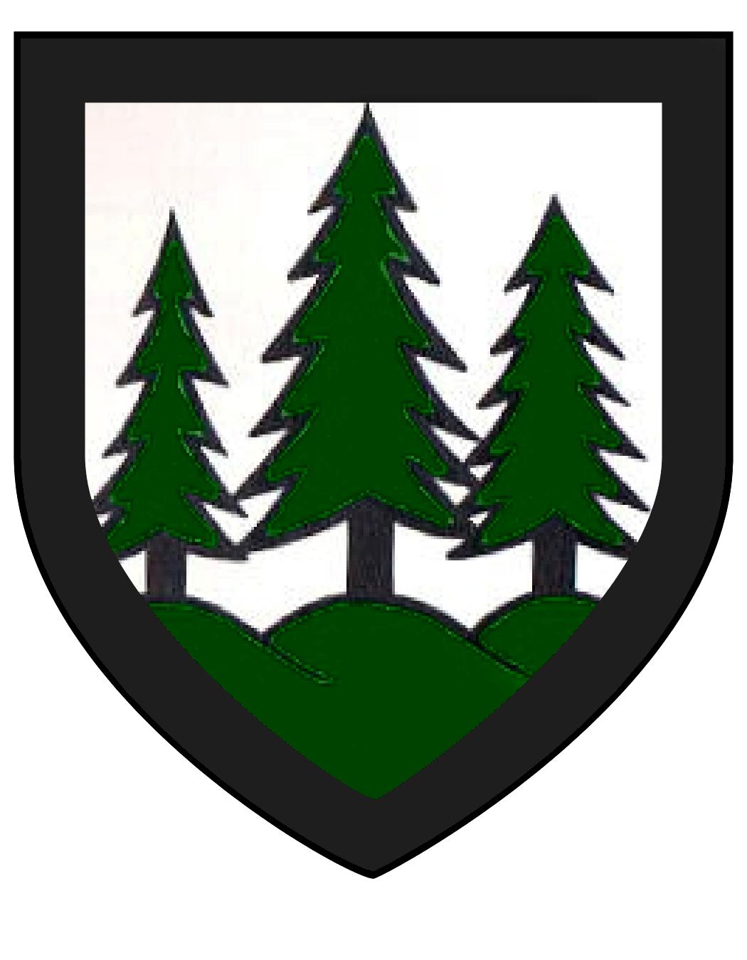 coat_of_arms_Eilika_of_J_terbog2.png