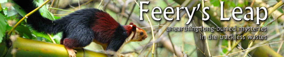 Feery s leap banner 2