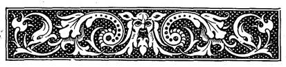 Viking border