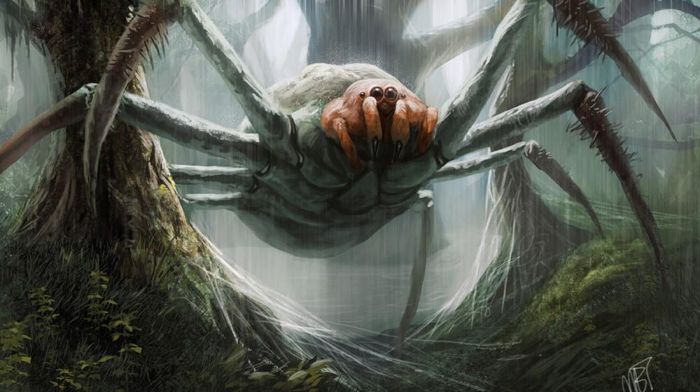 ob_a7cdb7_giant-spider.jpg