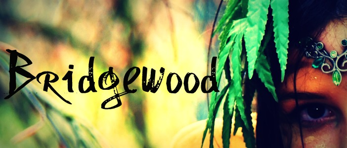 Bridgewoodbanner
