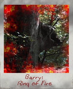 Baum2.jpg</a>