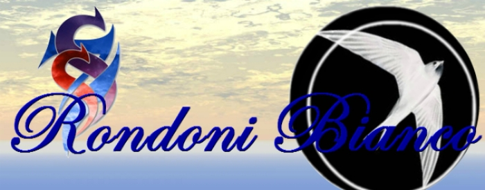 Rondoni bianco banner