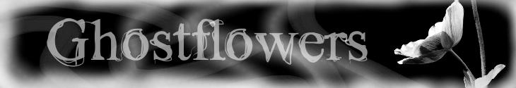 Ghostflowersbanner