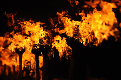 torches-dave-donaldson.jpg