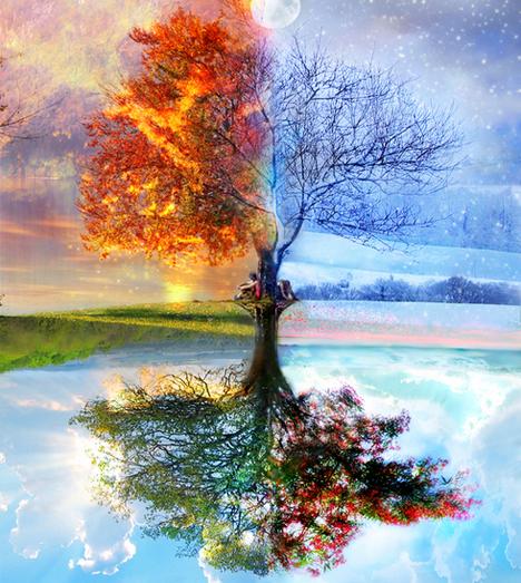 seasons-montage.png