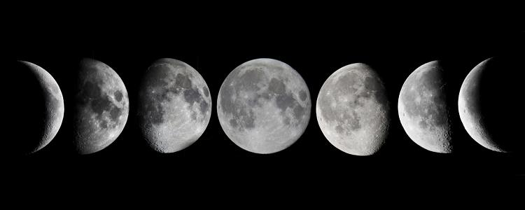 Phases of the moon  1