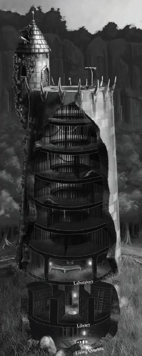 Scene_-_Necrarch_Tower_Log.jpg