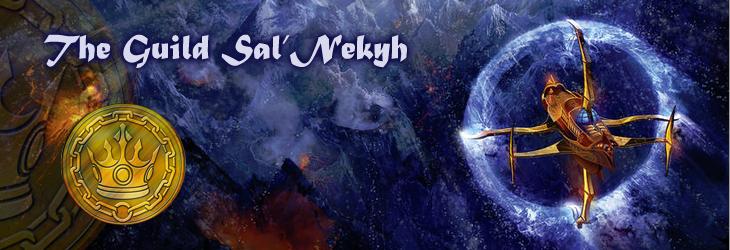 Salnekyh banner