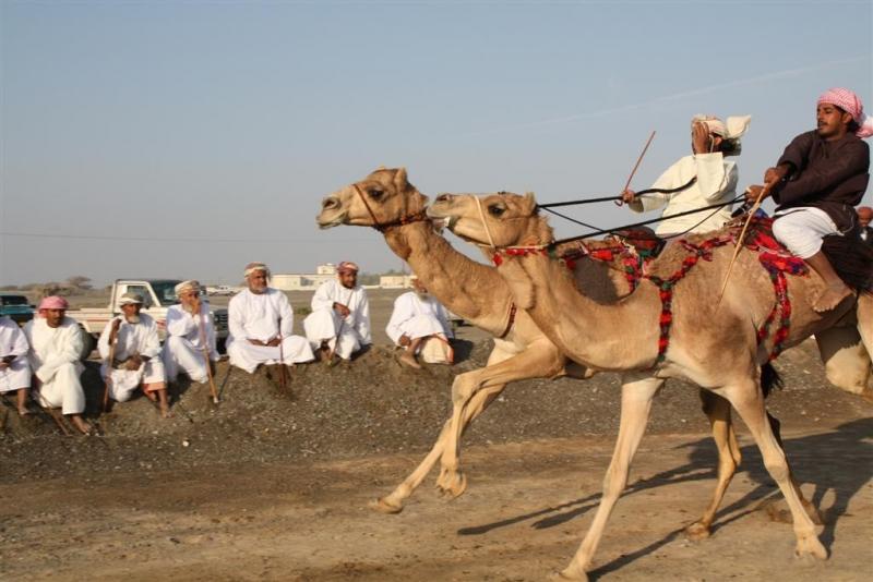 209788090_Oman-3421-Large.jpg
