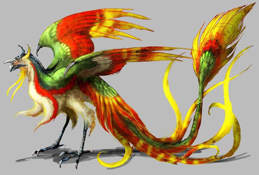 Multi coloured bird