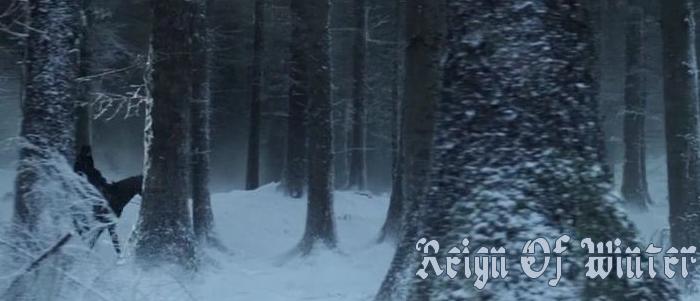 Reign of winter banner