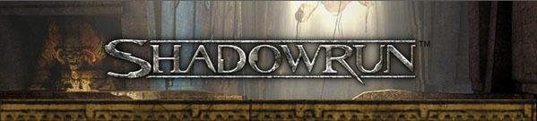 Banner shadowrun