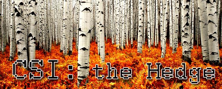 Csi the hedge banner 1