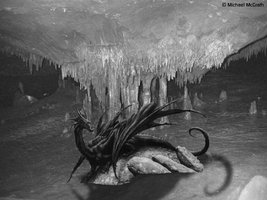 Black_and_White_Dragon_by_DestroyNoDead.jpg