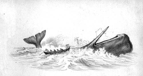 Hunting_of_sperm_whale.jpg