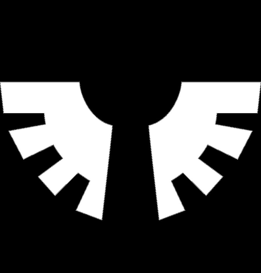 Void_Angels_Logo.jpg